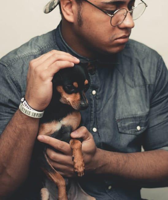dog-owner02.jpg